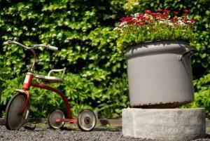 flowerpot-flowers-garden-2188