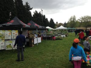 le stand des Pimprenelles sur Plantes Rares et Jardin Naturel 2016